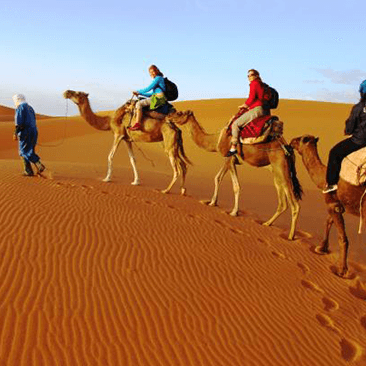 Join Our Casablanca Desert Tours To Enjoy Moroccos Magic 3